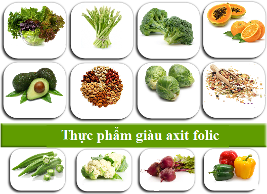 https://vinmec.com//uploaded/thuc-pham-giau-axit-folic.png