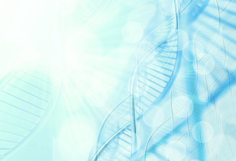 Ảnh hưởng của E2, P4, βHCG trong tiên lượng thai nghén ở các trường hợp sau chuyển phôi trừ ngày thứ 14