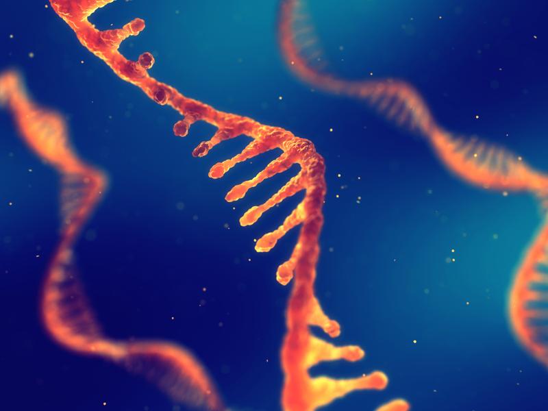 Những tác động của việc ghép tế bào gốc đơn nhân tủy xương lên chất lượng cuộc sống của trẻ bại não