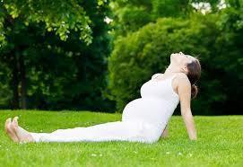 20190126_042004_203918_yoga-cho-ba-bau-4.max-1800x1800.jpg