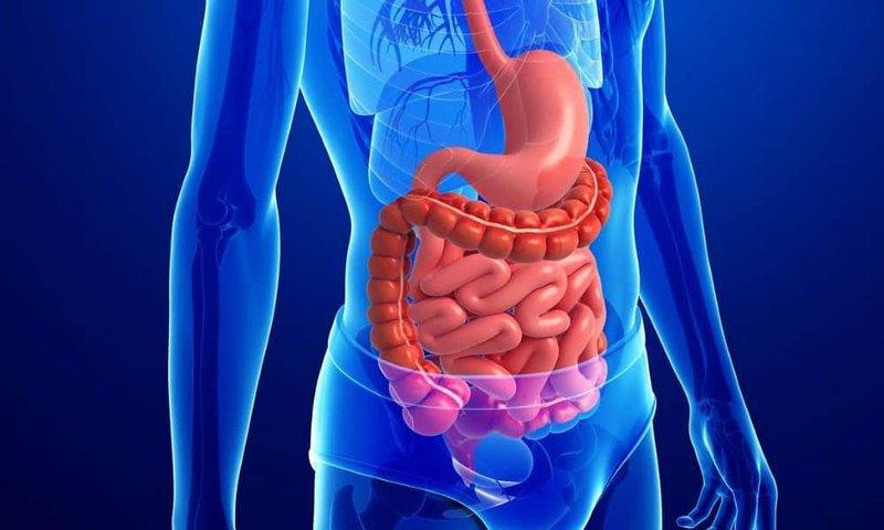 Gói tầm soát và phát hiện sớm ung thư đường tiêu hoá (thực quản, dạ dày, đại tràng) Vinmec Phú Quốc 1