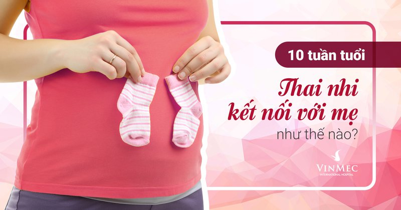 Vì sao mẹ nên sàng lọc trước sinh NIPT ngay từ tuần thứ 10?