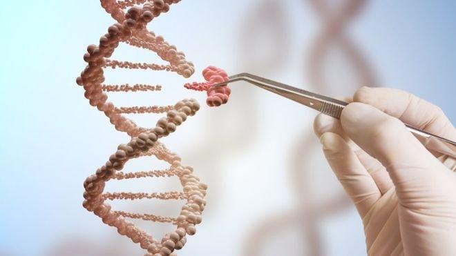 Xét nghiệm đột biến gen di truyền