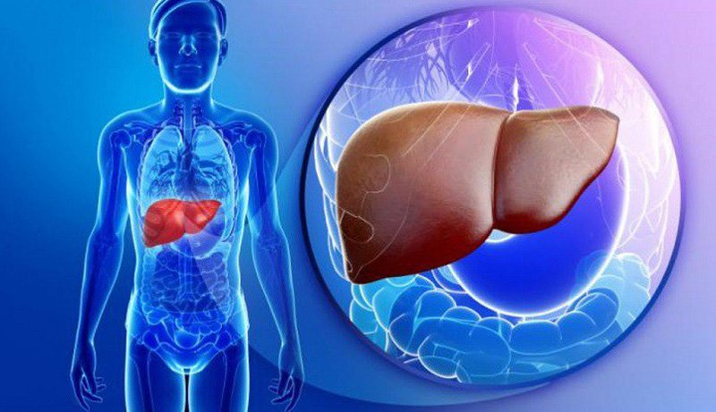 Ung thư tế bào gan