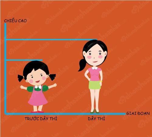 Những thay đổi của cơ thể bé gái khi bước vào tuổi dậy thì