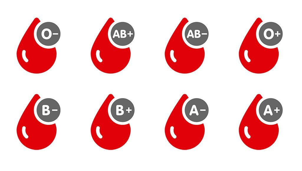 Các thành phần của máu, lượng máu trong cơ thể người bình thường là bao nhiêu?