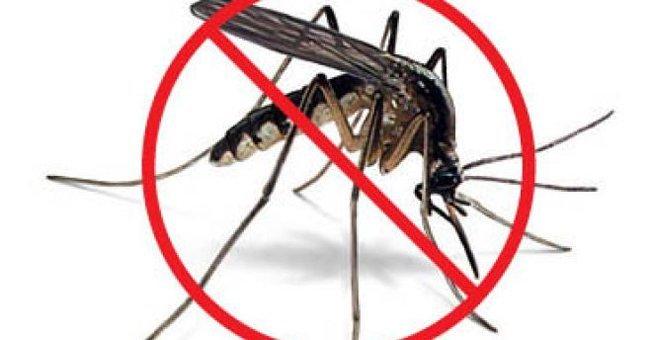 bệnh do muỗi