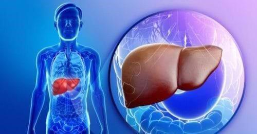 xét nghiệm chức năng gan
