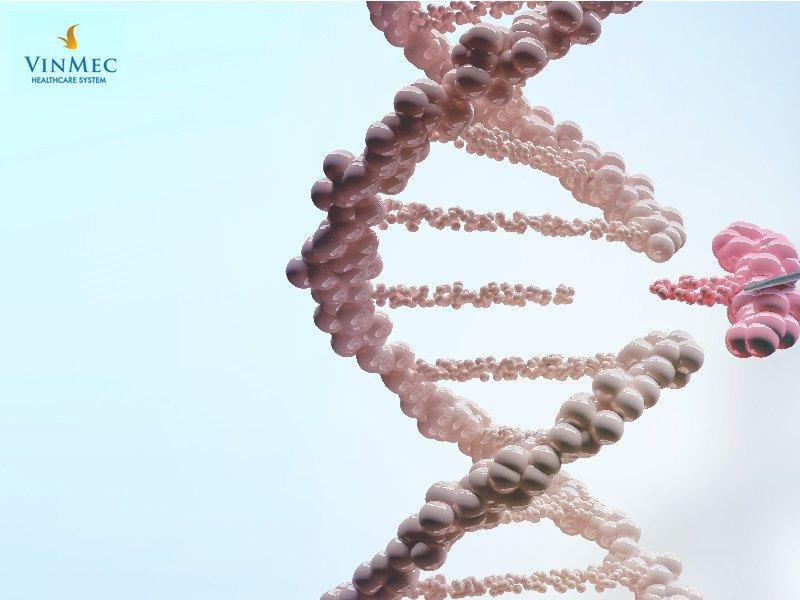 Xét nghiệm gen