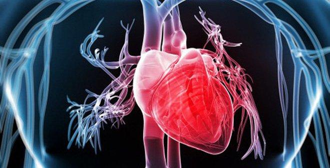 Siêu âm tim qua thành ngực là gì?