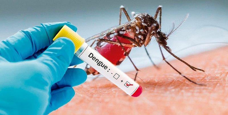 Dấu hiệu giảm tiểu cầu khi bị sốt xuất huyết
