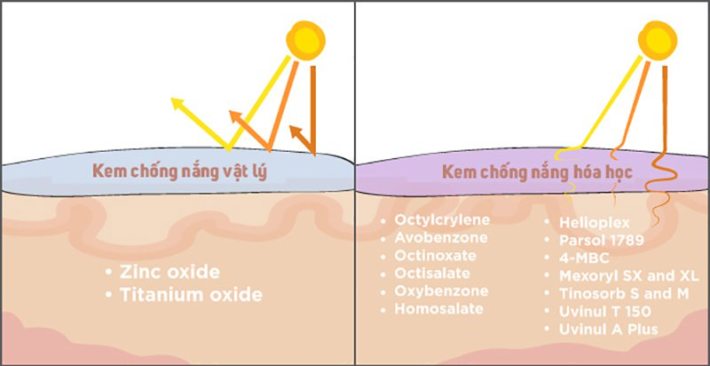 Sự khác nhau giữa kem chống nắng vật lý và kem chống nắng hóa học