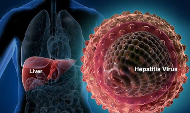 Virus viêm gan B có khả năng lây truyền cao gấp 50-100 lần so với virus HIV