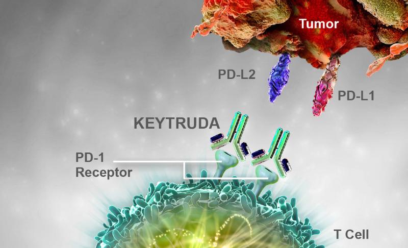 Pembrolizumab ( Keytruda) - Bước tiến mới trong điều trị ung thư dạ dày - thực quản