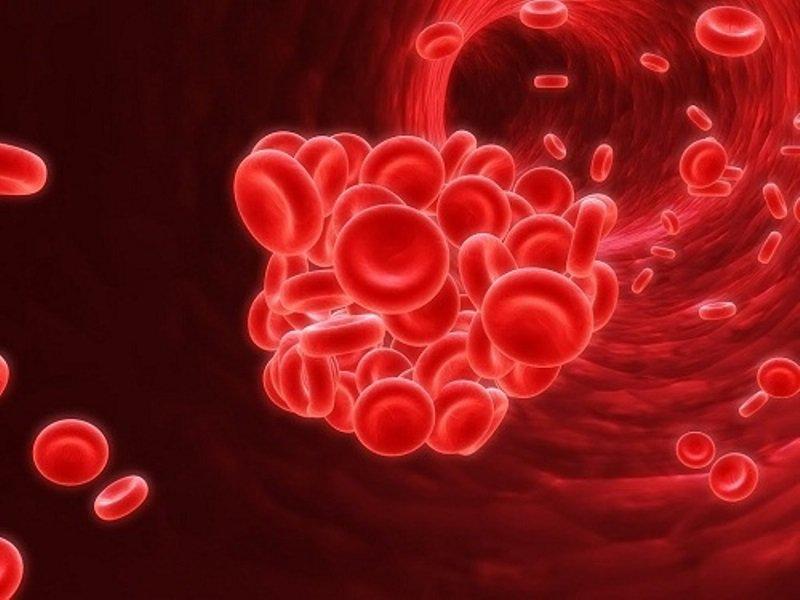 Vai trò của ALT và AST trong chẩn đoán các bệnh về gan
