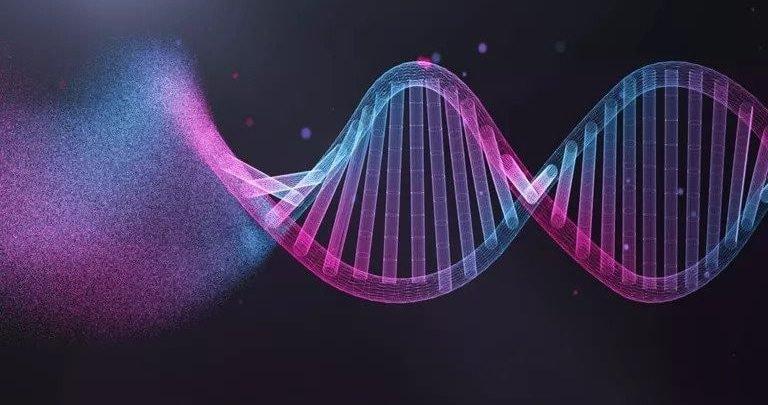 Bộ gen người có đặc điểm, tính chất gì?