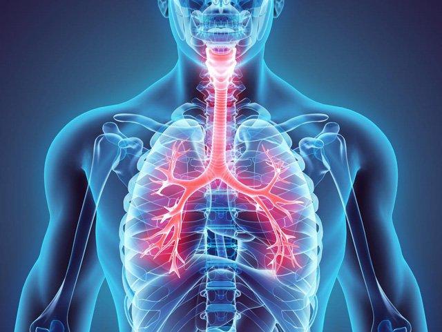 Các chỉ số trong kết quả đo chức năng hô hấp