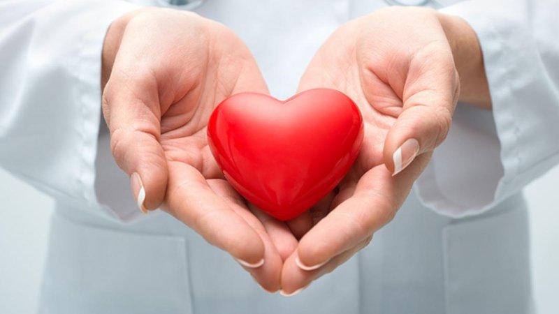 Siêu âm trong lòng mạch