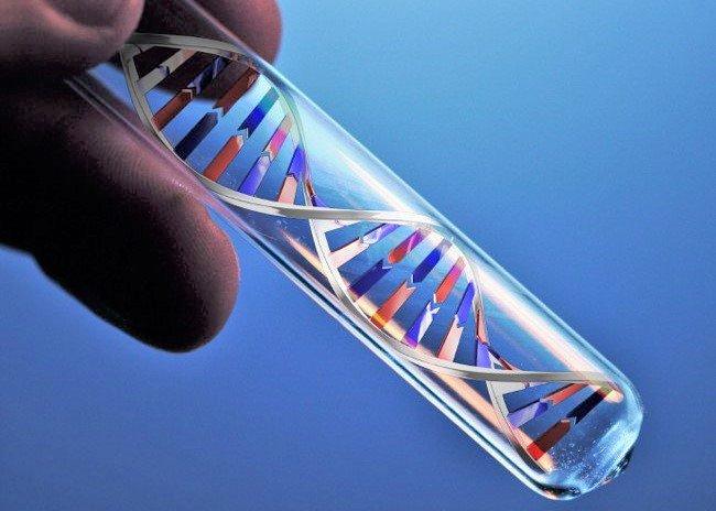 ADN test