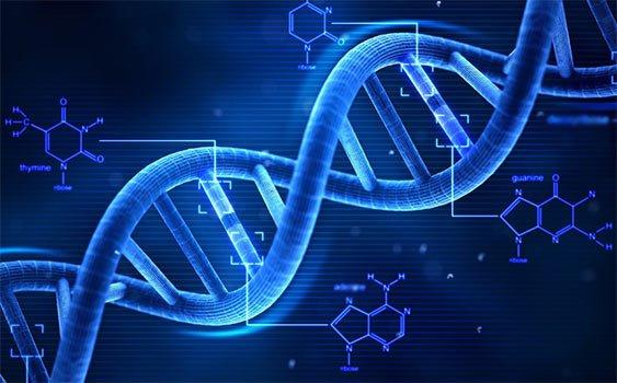 Xét nghiệm gene di truyền