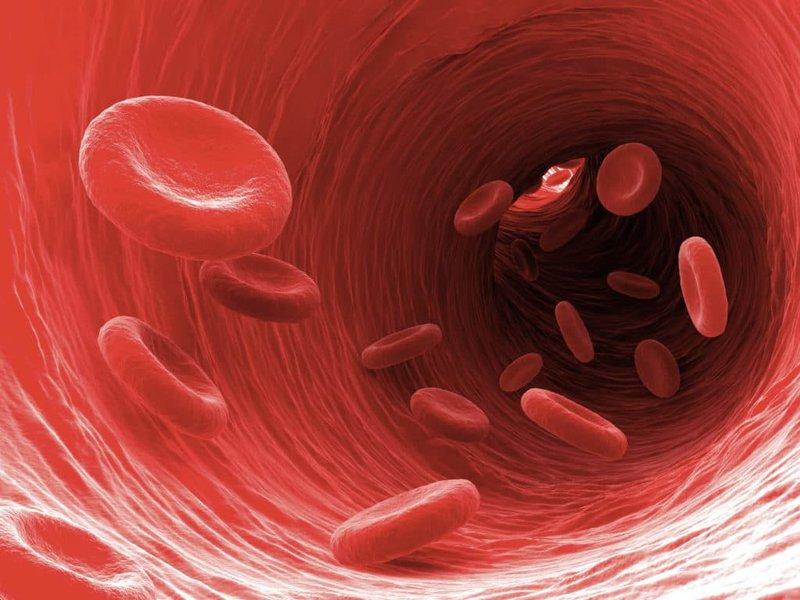 Nhiễm trùng máu