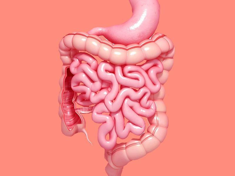 Xét nghiệm tìm máu ẩn trong phân, phát hiện polyp và ung thư đại trực tràng