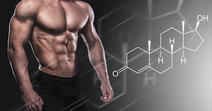 Testosterone tăng