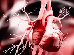 Suy tim xung huyết