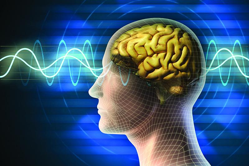 Ghi điện não đồ khi ngủ