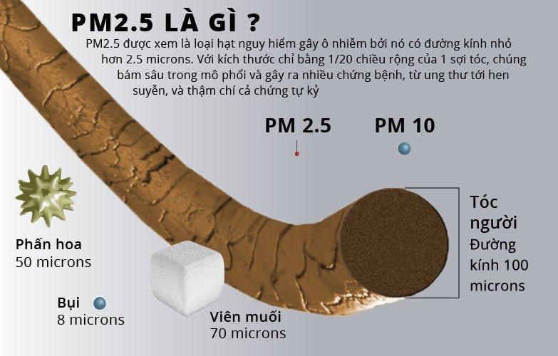 Bụi mịn PM2.5 và PM10 nguy hiểm như thế nào?
