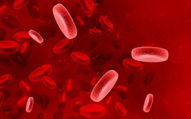 Xét nghiệm tế bào máu ngoại vi