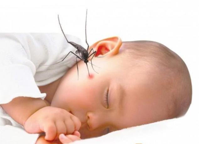 Chăm sóc trẻ bị sốt xuất huyết tại nhà: Nguyên tắc cần nhớ | Vinmec