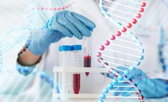 Xét nghiệm gen trước khi mang thai