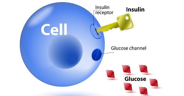 Kháng insulin