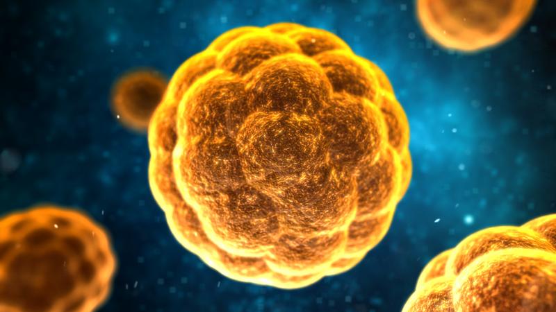 Ai nên tiêm chủng ngừa viêm gan A?