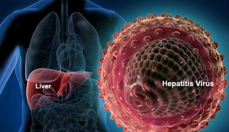Viêm gan B cấp tính và mãn tính