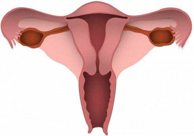 Ảnh hưởng của rách cổ tử cung và cách xử trí