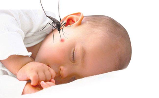 Sốt xuất huyết ở trẻ sơ sinh