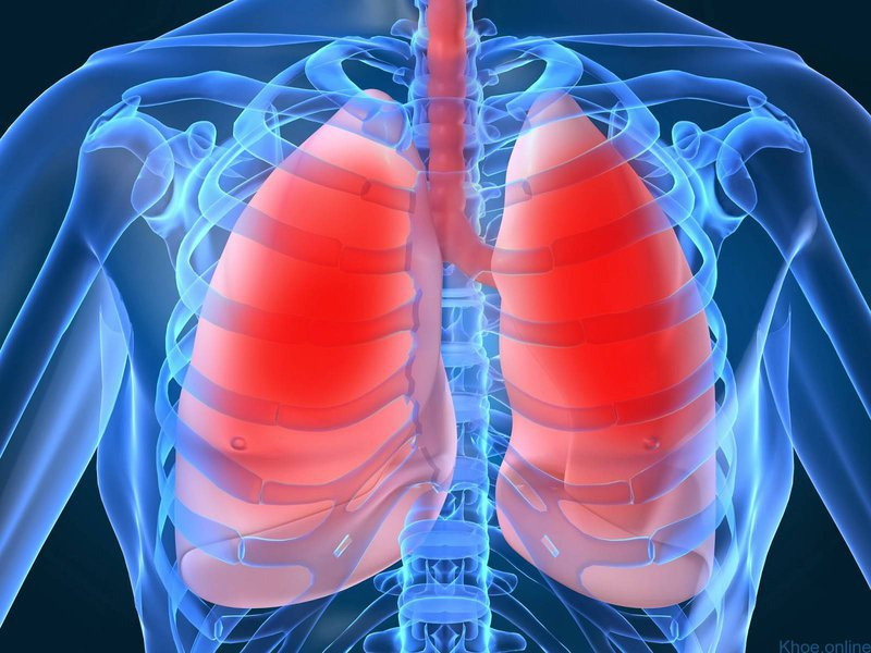 Các loại phẫu thuật phổi thường gặp | Vinmec