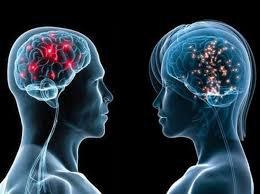 U nguyên bào thần kinh