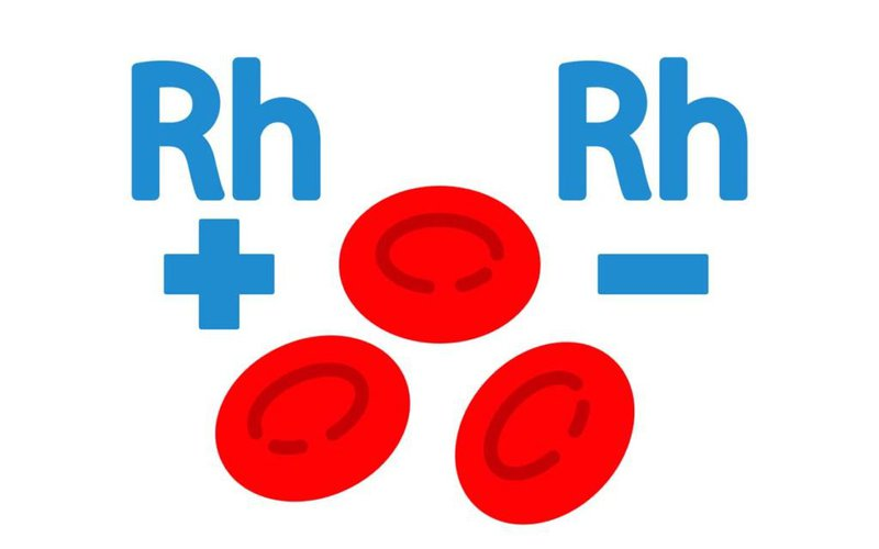 Nhóm máu Rh