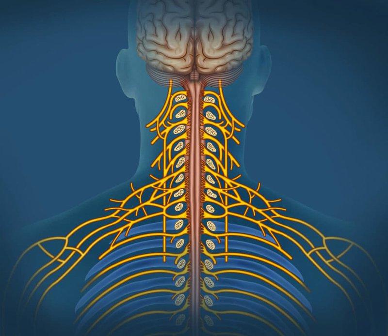 Đau thần kinh