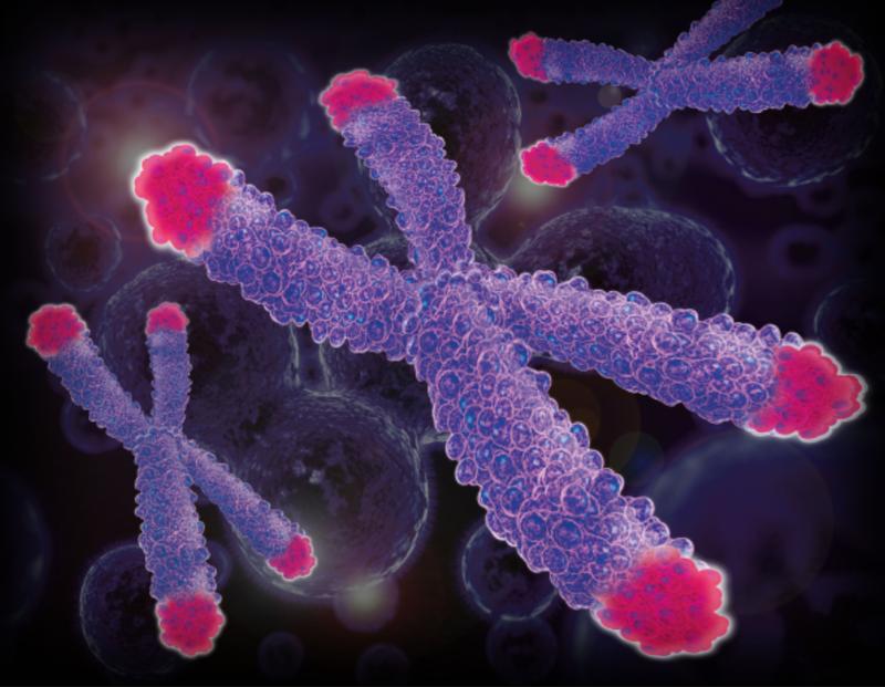 Di truyền do bất thường nhiễm sắc thể