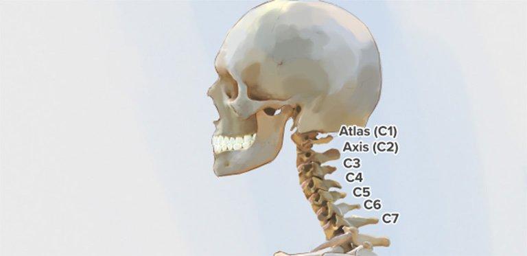 X quang đốt sống cổ C1-C2