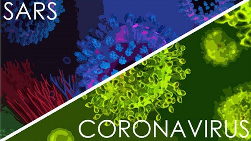 virus corona có giống với virus gây bệnh sars không