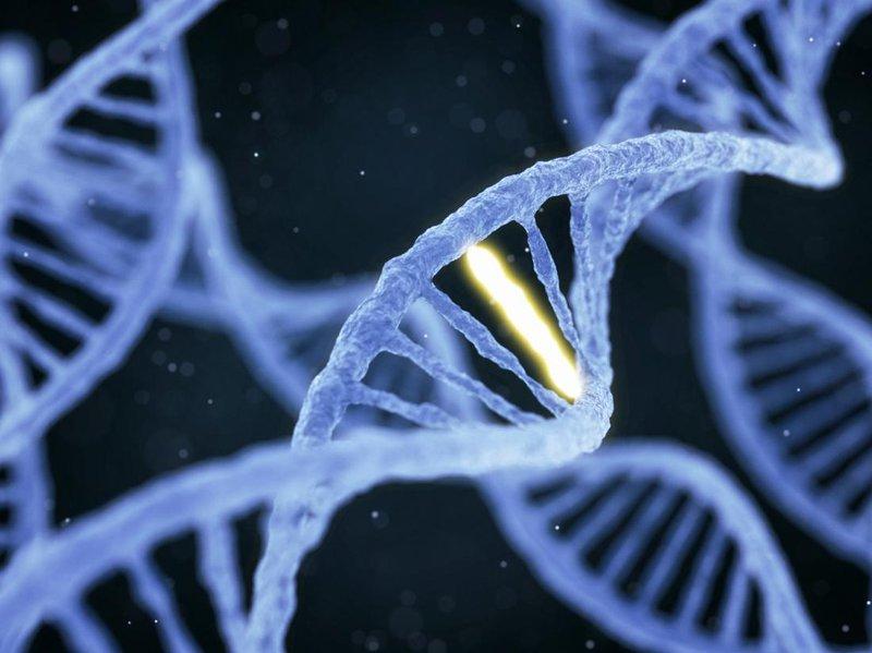 Phenylceton niệu là một bệnh di truyền