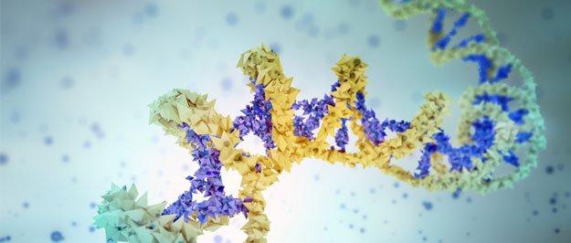 Sinh thiết lỏng DNA