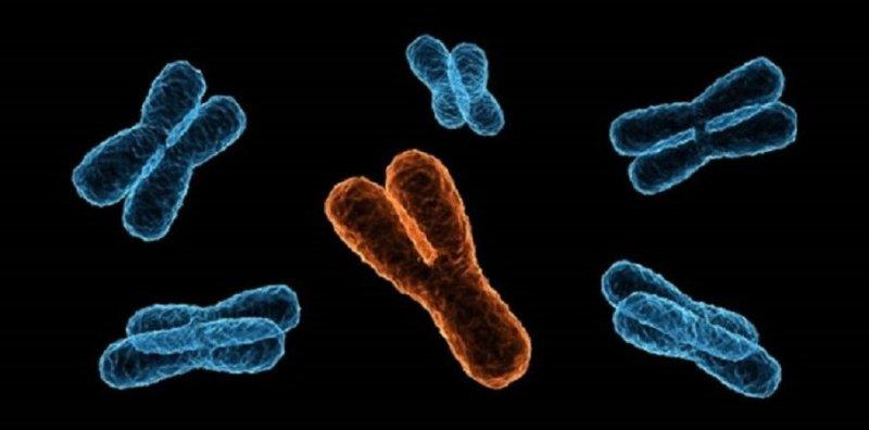 Hội chứng kháng androgen