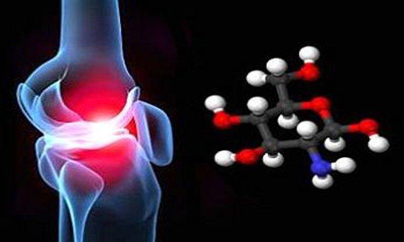 tìm hiểu về Chondroitin Sulfate