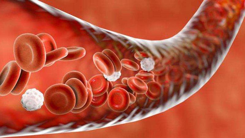 tăng thân nhiệt ác tính gây rối loạn đông máu